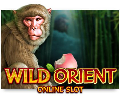 Machine à sous White Buffalo gratuit dans Microgaming casino