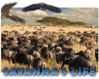 machine à sous Savanna's Life du logiciel EGT