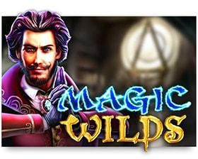 machine a sous Magic Wilds logiciel red Rake Gaming