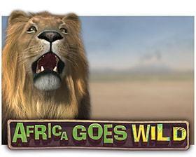 machine a sous en liggne Africa Goes Wild logiciel Leander