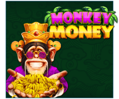 machine a sous Monkey Money logiciel Booongo