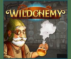 machine a sous en ligne  Wildchemy logiciel Relax Gaming