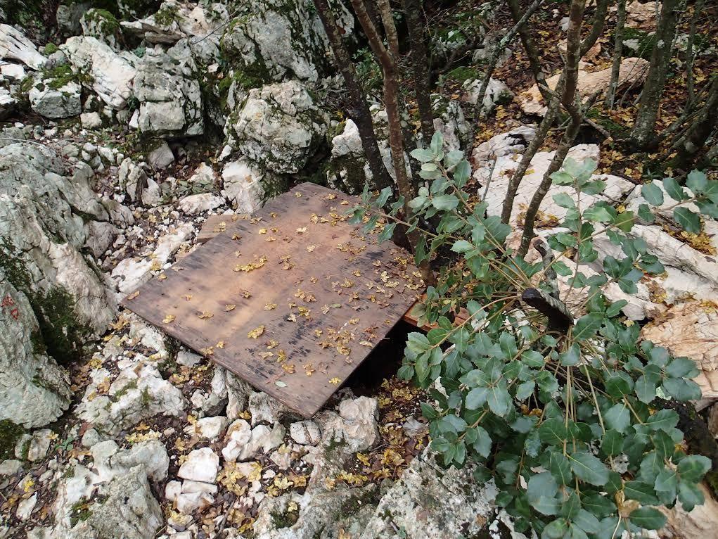 L'ENTREE ISOLEE DE L'AVEN EST BIEN PROTEGEE PAR DES PLANCHES