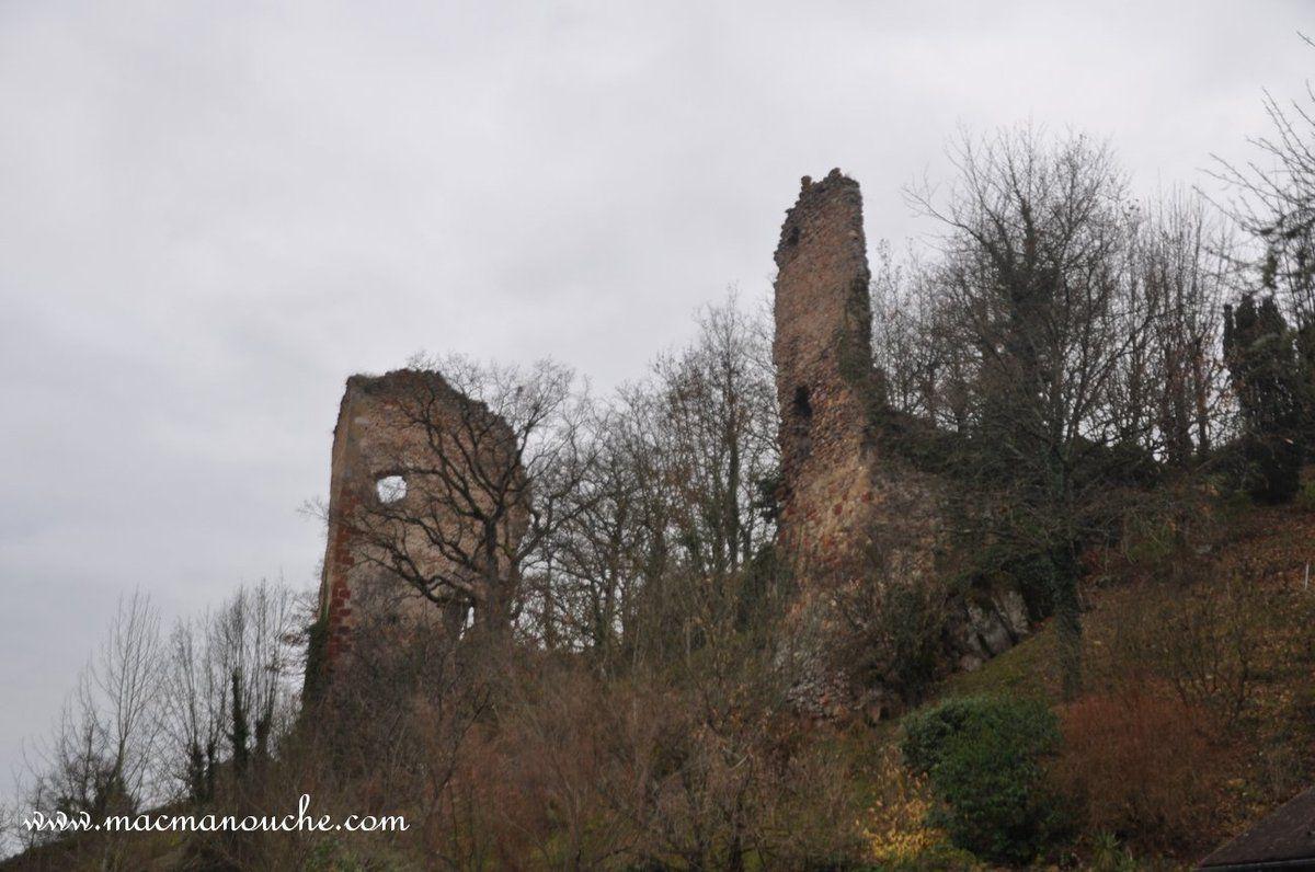 Avant de terminer  la randonnée, encore une photo des ruines du château de Murat (03390).