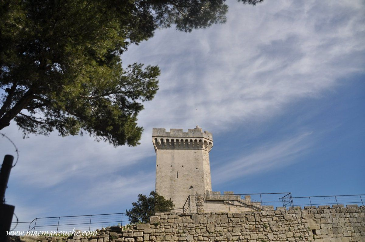 La Tour Maîtresse du château.