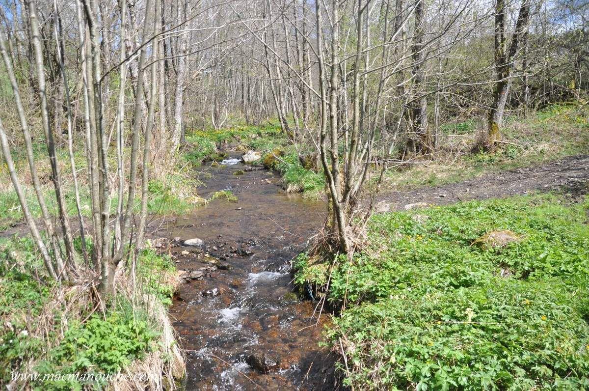Ruisseau que nous retraverserons un peu plus loin sur le parcours.