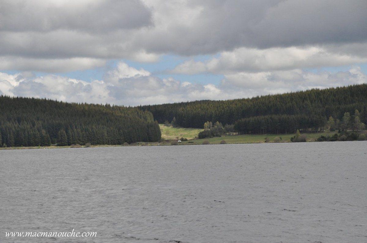 Le lac est  connu pour sa richesse faunistique et floristique.