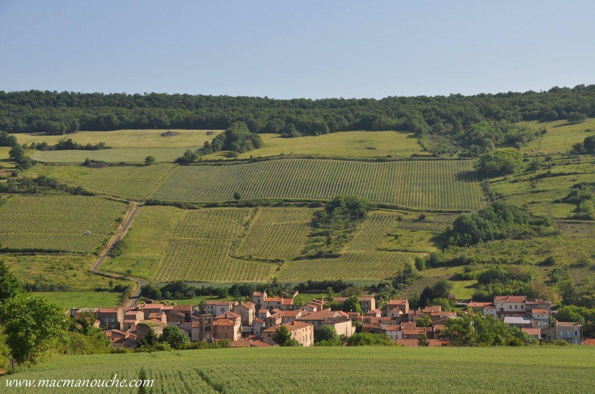 Le panorama sur Boudes et son vignoble est splendide, vallonné, et  baigné de soleil.