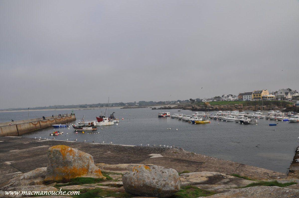 Le port, vu depuis le phare.