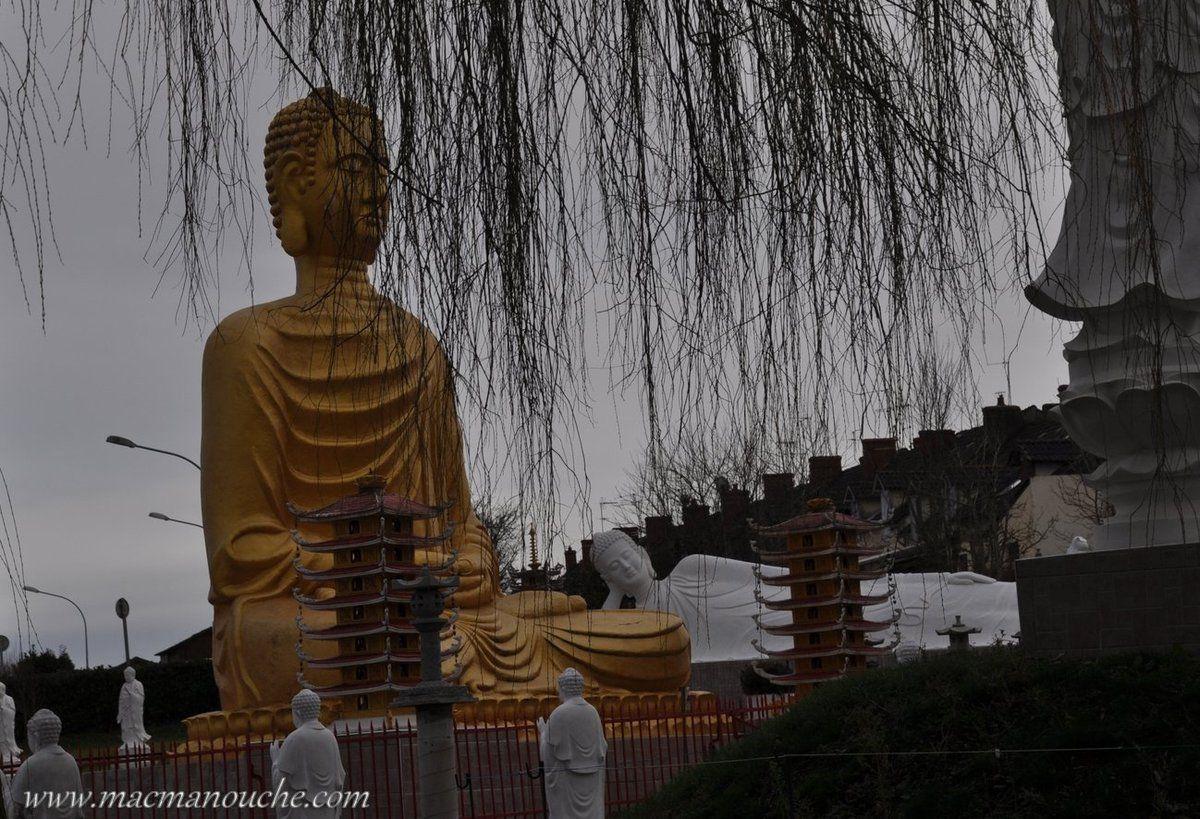 ==>  un gigantesque Bouddha doré, de plusieurs mètres de haut, statue semblable à celles d'Asie.