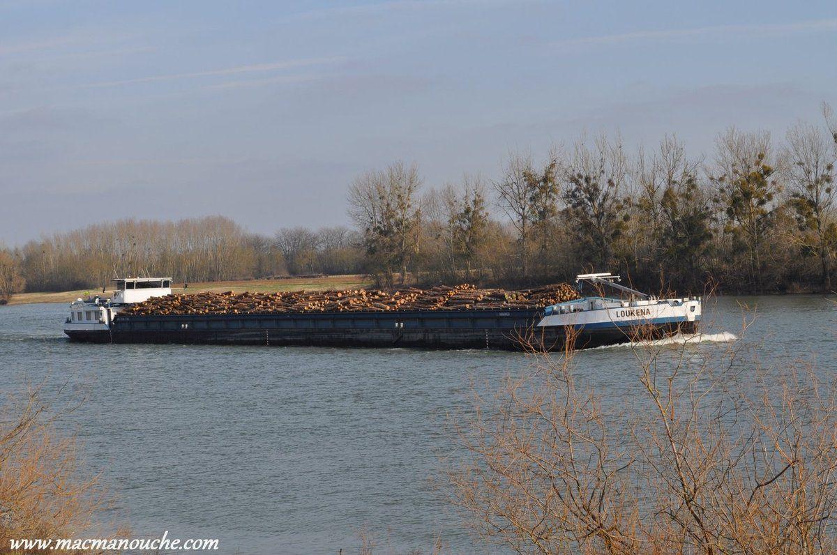 Péniche  remontant la Saône.