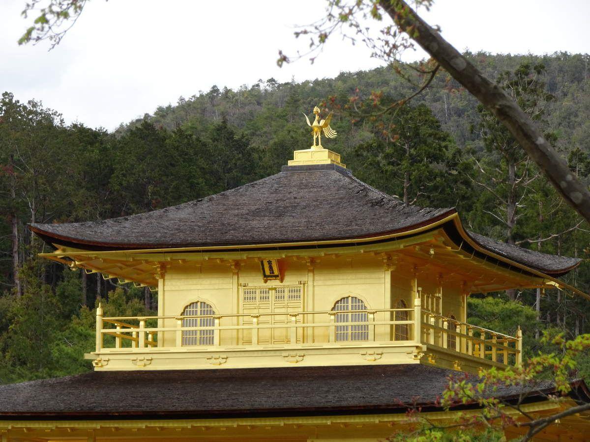 Du Mont Koya à Kyoto