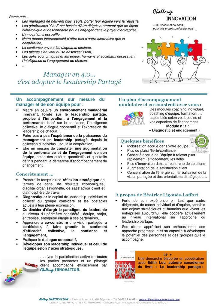 Manager en 4.0, c'est adopter le Leadership Partagé