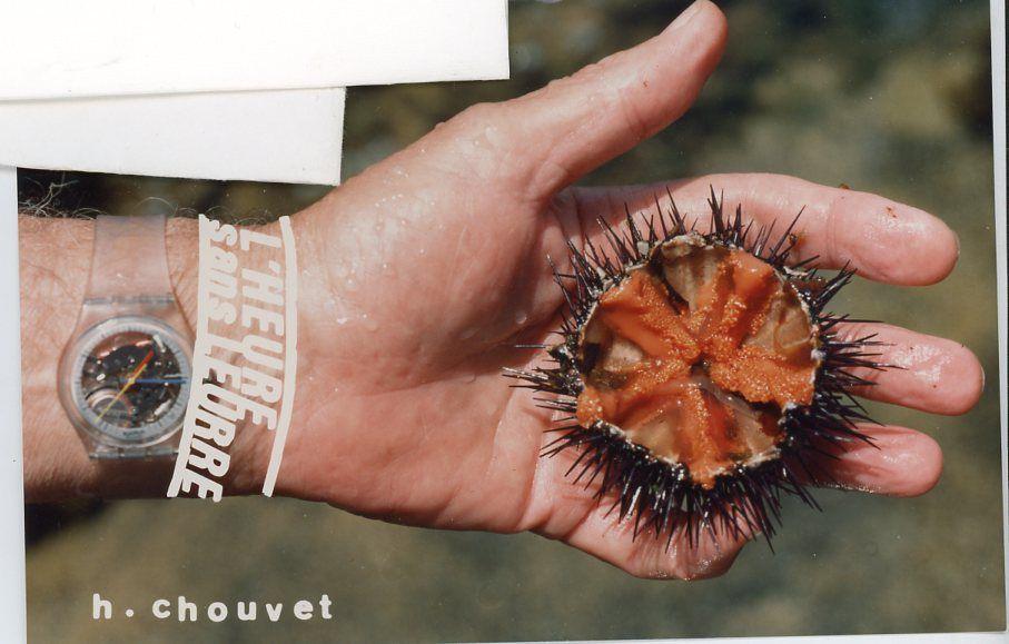 en haut  l'heure c'est l'heure par Henri Chouvet, en bas  photo d'Eli Lotar