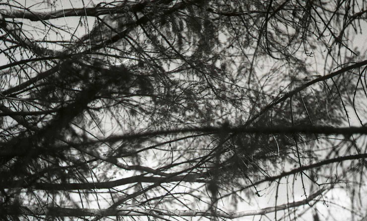 Chambon sur Lignon Août 1961© Jean-Pierre Bénisti