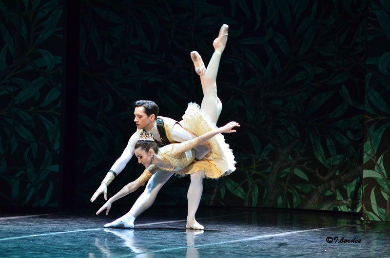 Photos originales du ballet  «Ballet  « LA BELLE AU BOIS DORMANT » PIOTR ILITCH TCHAÏKOVSKI  à l'Opéra-Théâtre de Metz Métropole- Chorégraphie :  Avec le Ballet de l'Opéra ( à 20 h : les Jeu 22 Déc. 2016 Ven  23,  Mar 27, Sam 31   et à 15 h :   Lun 26  et Dim 1 Janv. 2017   )