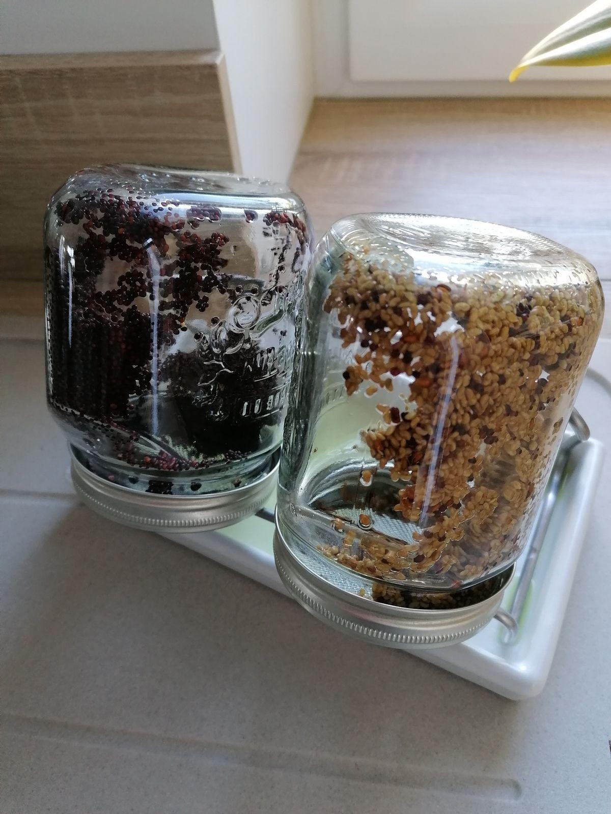 Etape 3 : Rincer et drainer, matin et soir, le nombre de jours nécessaires à l'obtention des graines germées ou des jeunes pousses.