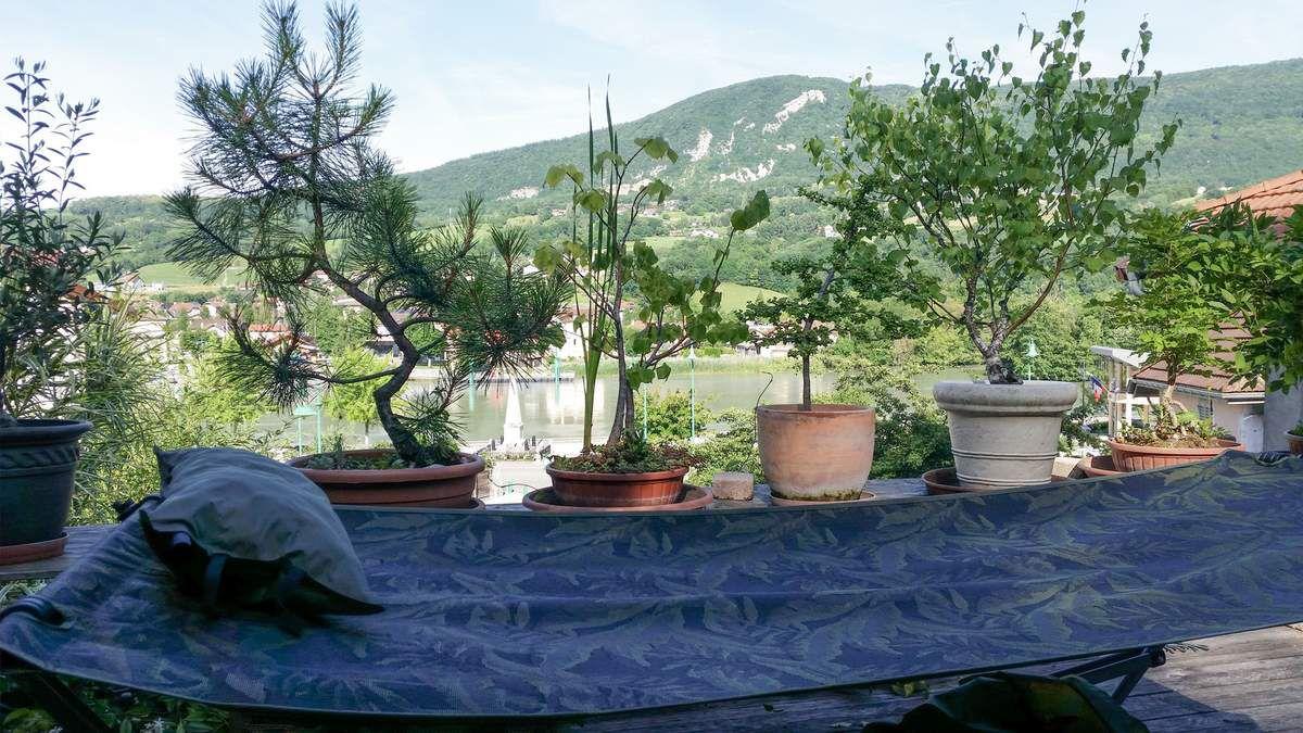 Jardin extérieur 1