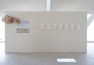 """Biennale de Sharjah - """"unexpected distances"""", 2017"""