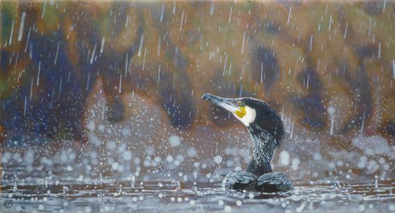 tableau peinture le grand cormoran sous la pluie