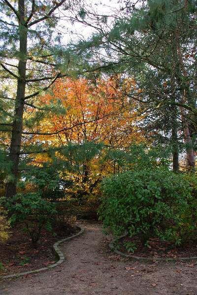 L'automne au parc de Montmorency sous le regard de Jacques Picard