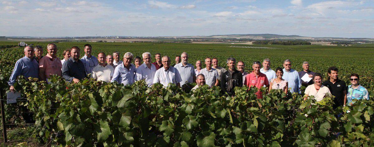 Après les vignes de Champagne en 2017, direction celles de Cognac en cette fin de mois d'août.
