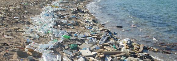 Une plage de république dominicaine dont les eaux sont également contaminées au plomb suite aux rejets dans la mer d'une usine voisine
