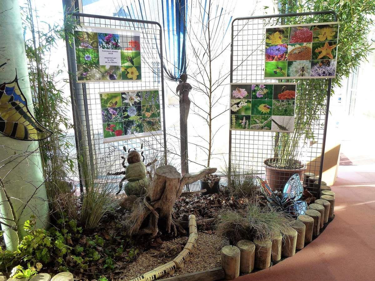 Les pollinisateurs de nos jardins, concours photos organisé par la ville de La Flèche. Classée deuxième, j'obtiens le prix du jury et le prix municipal du service des espaces verts. L'exposition à lieu du 9 décembre 2016 au 13 janvier 2017 à l'hôtel de ville de La Flèche.