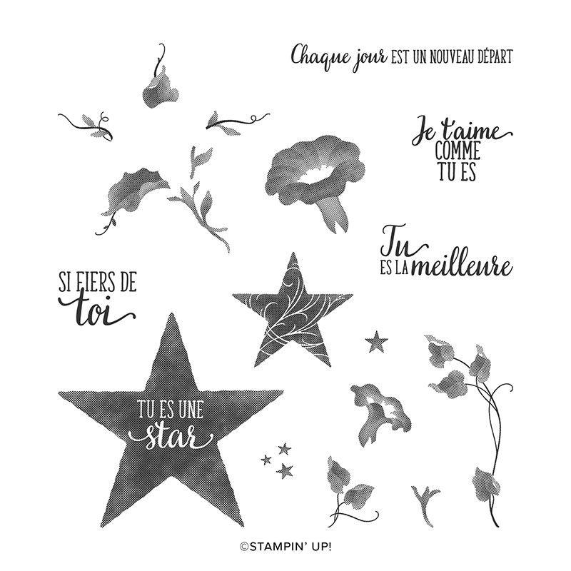 Étoile Du Jour Photopolymer Stamp Set (French)réf : 152382 Prix : 10,50 €