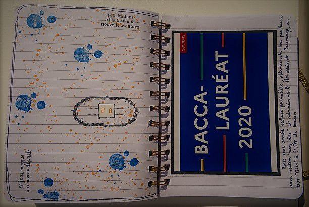PL 2020: Quelques pages avec photo + semaine 34.