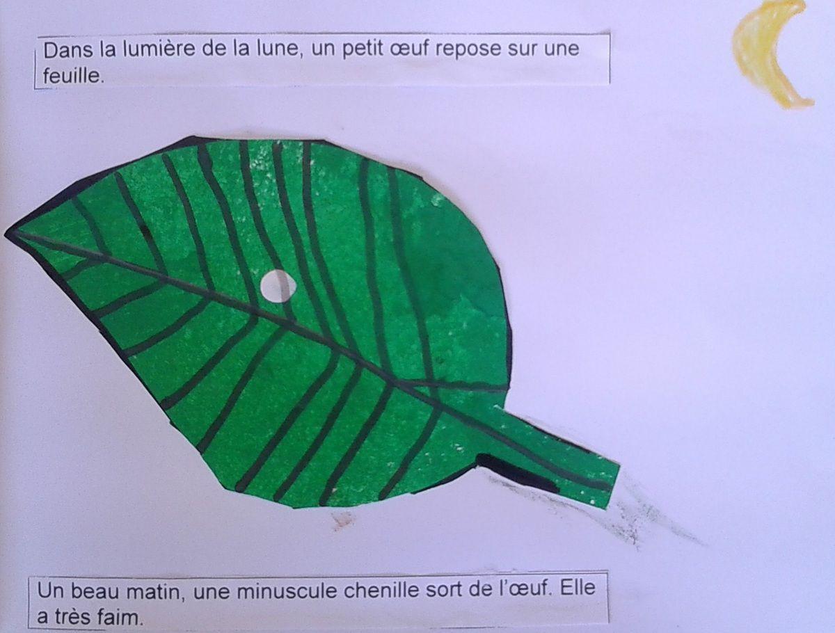 """""""La chenille qui fait des trous"""" d'après l'album d'Eric Carle"""