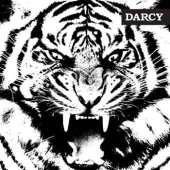 DARCY  - Tigre