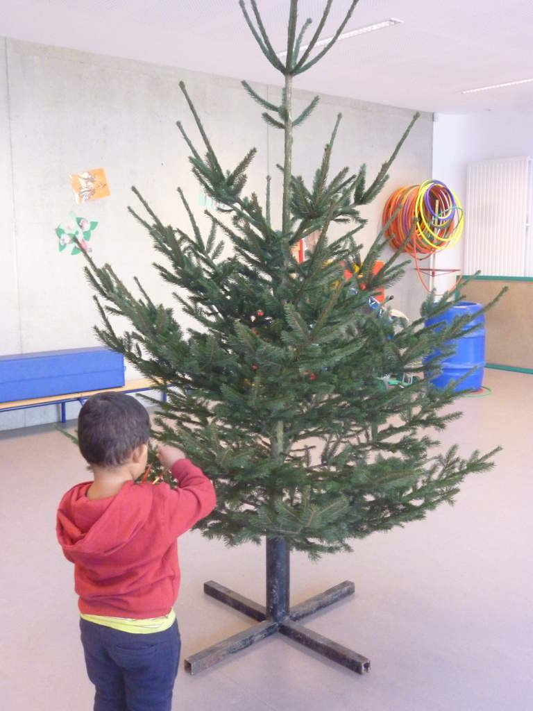 notre sapin !