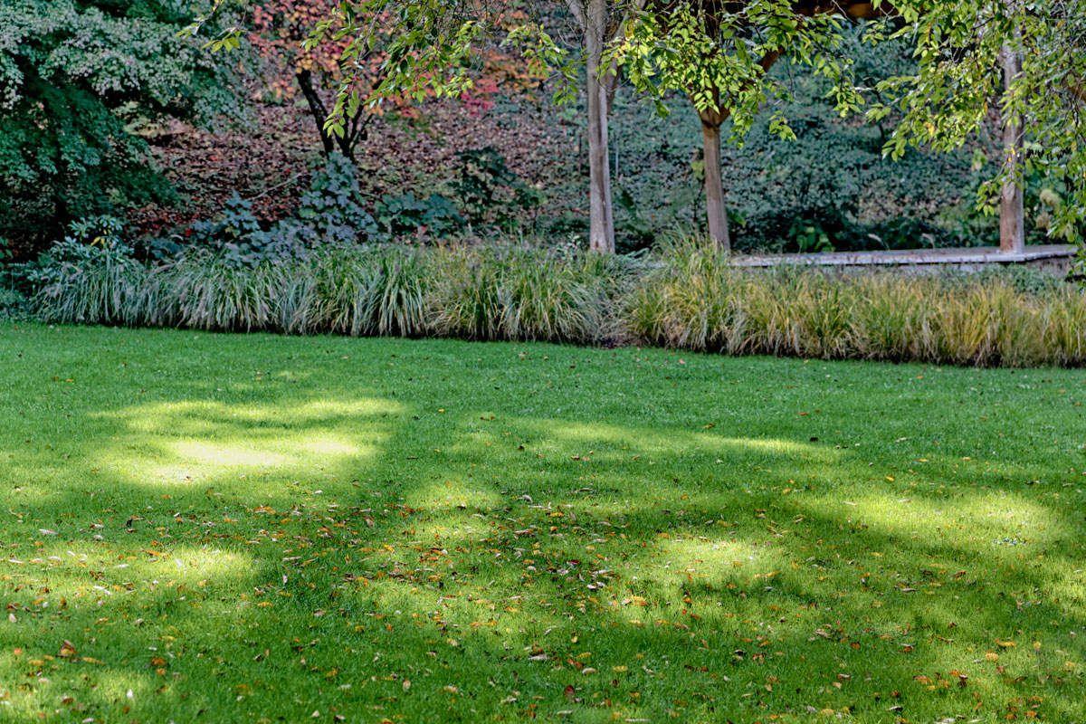 L'arboretum de la Sédelle - 4