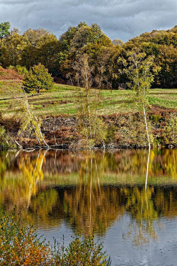Le circuit des étangs à Thouron