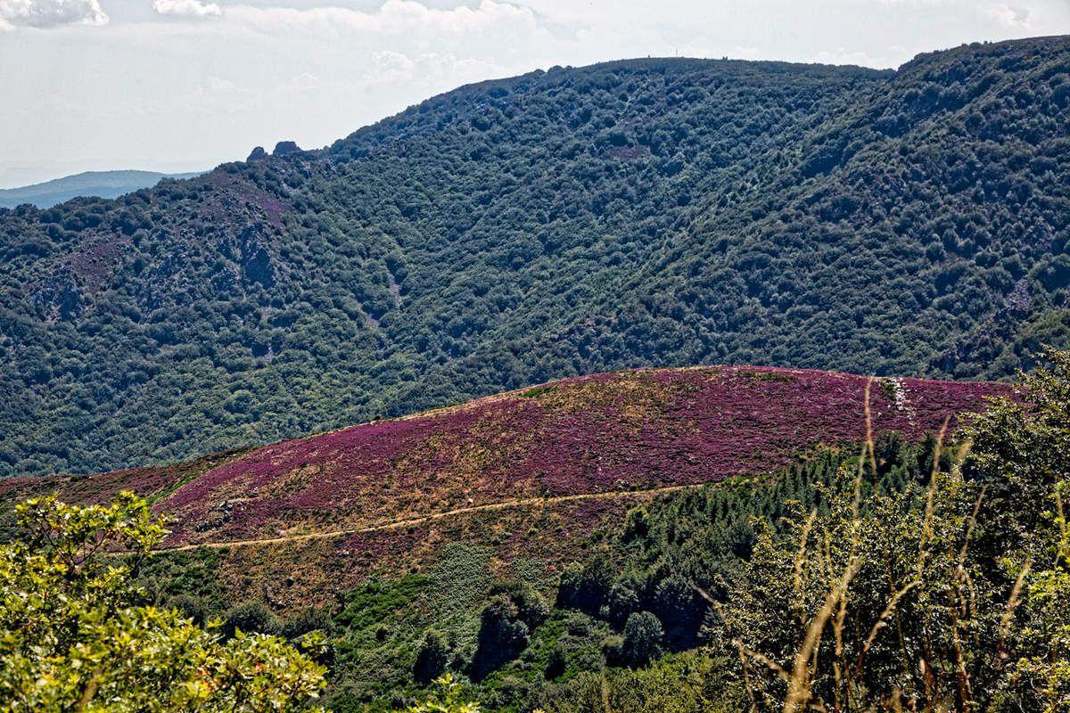 GR7- Col de Fontfroide