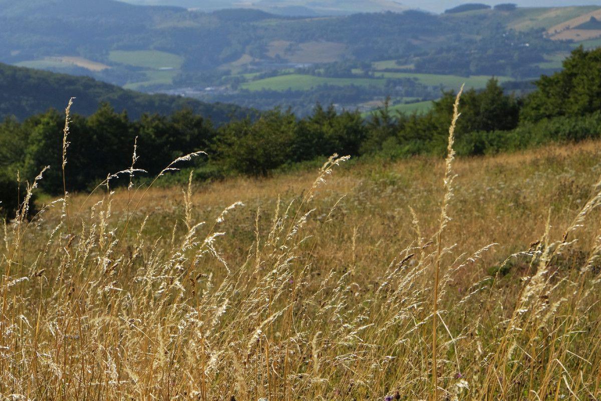 Monts de Lacaune - Tarn et Garonne