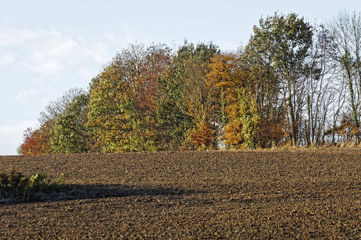 Fresselines - Creuse