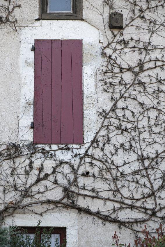 Saint-Jean-de-Côle  -  Dordogne  -  Périgord Vert