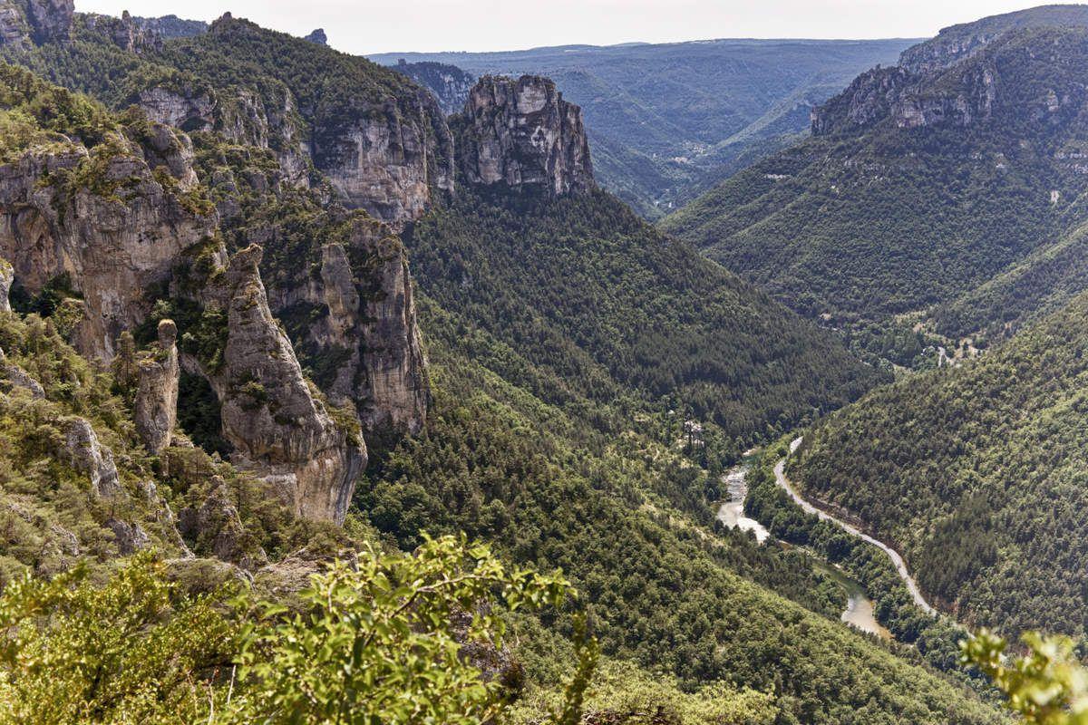 Les Gorges du Tarn - 1