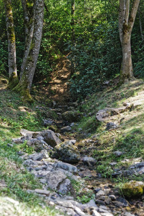 Source de l'Aveyron
