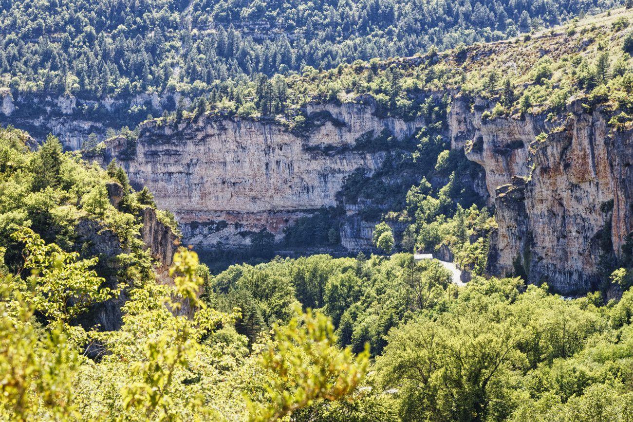 Gorges du Tarn -  Lozère - 1