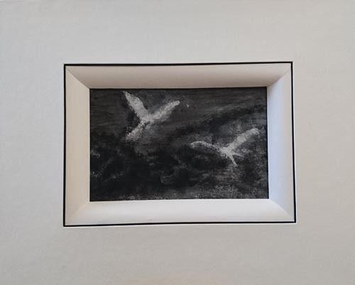 À l'ombre des oiseaux / 24
