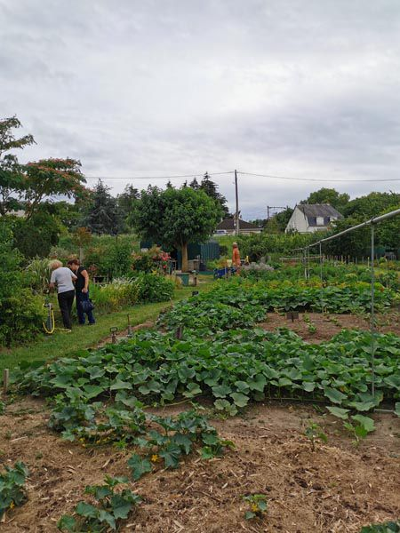 Jardins en liberté