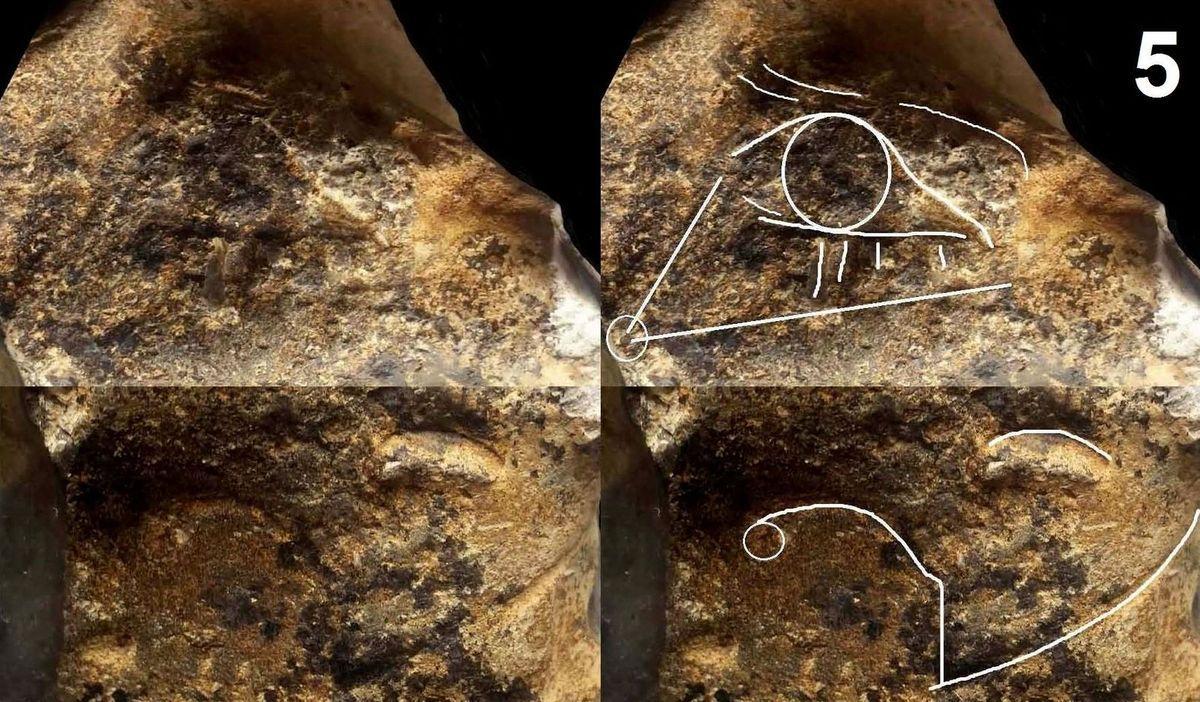 portrait mousterien neandertal paleolithique mousterian neanderthal paleolithic