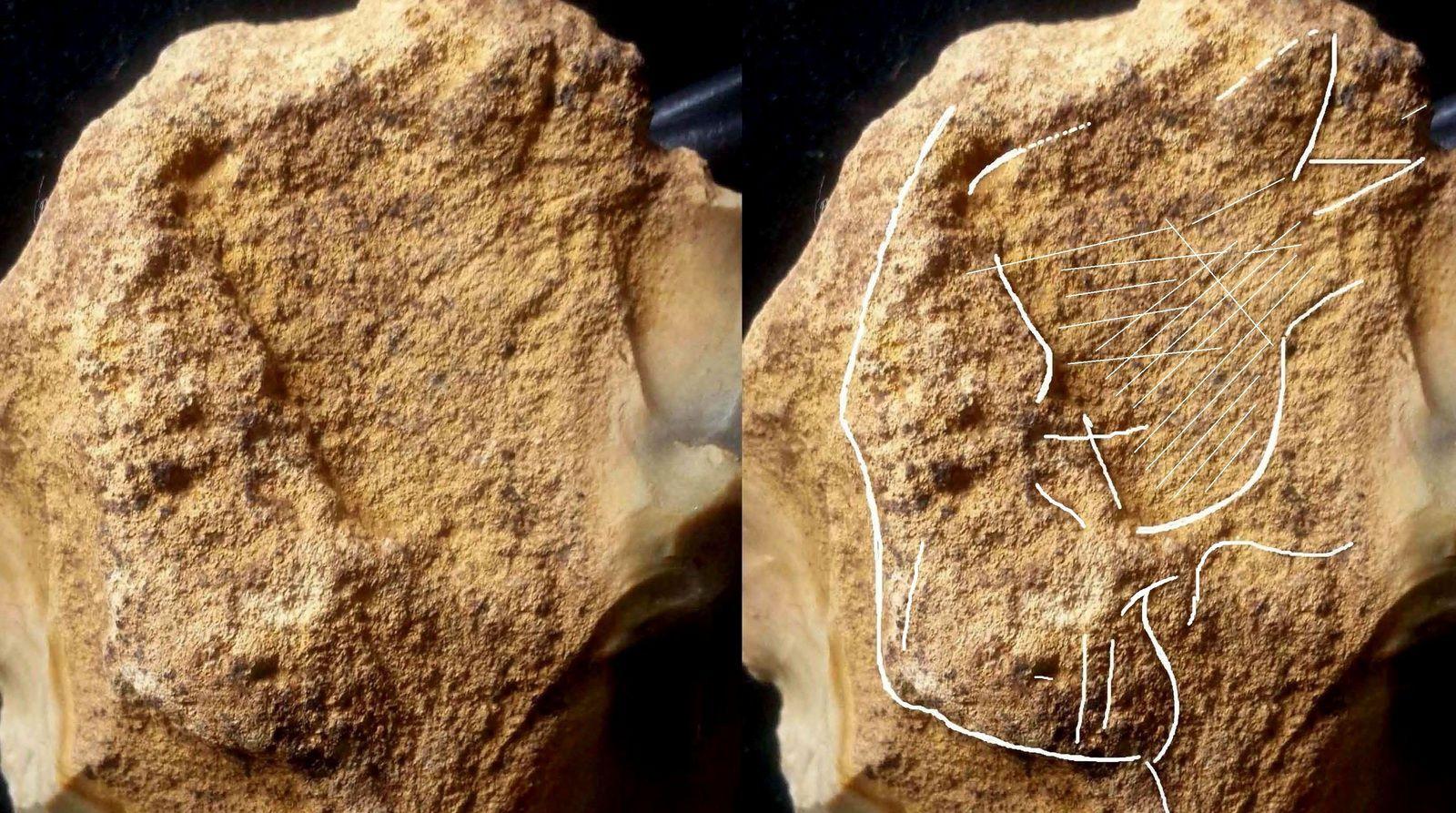 neandertal artiste, mousterien, saint-brice-sous râne