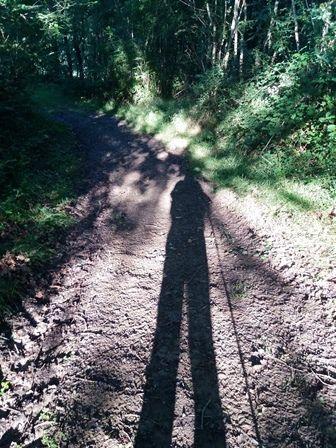 L'ombre du pélerin.