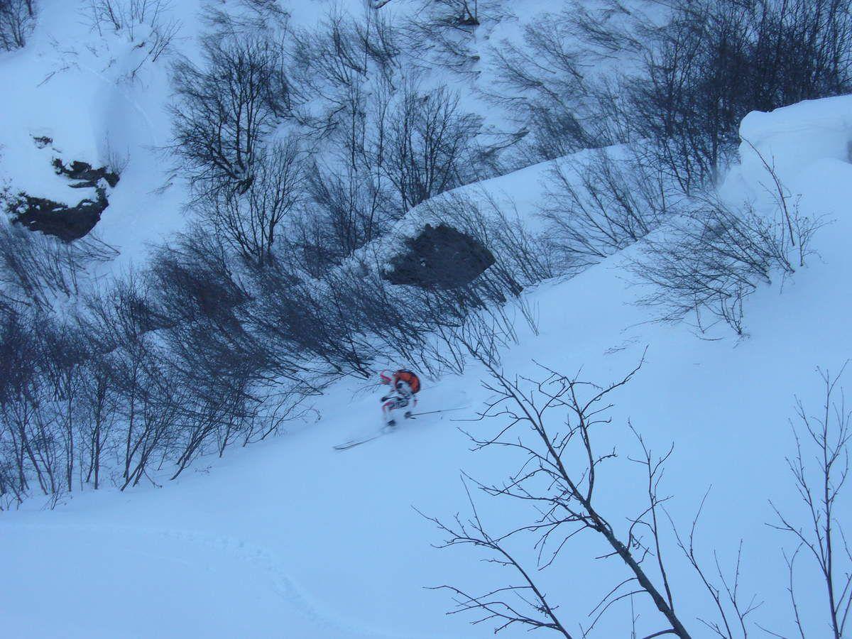 """Bubu dans l'itinéraire """"bison futé"""" version fou de forêt, pas super skiable quand même..."""