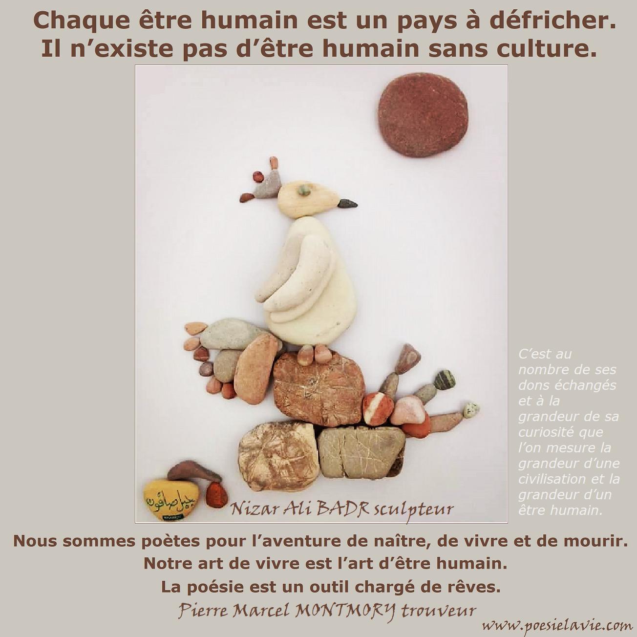 BIO - PIERRE MARCEL MONTMORY - TROUVEUR