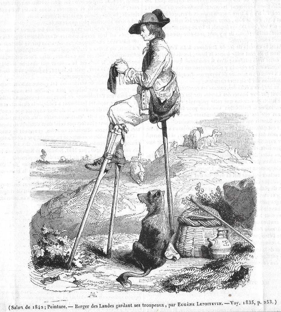 Une peinture d'un berger des Landes tricoteur !